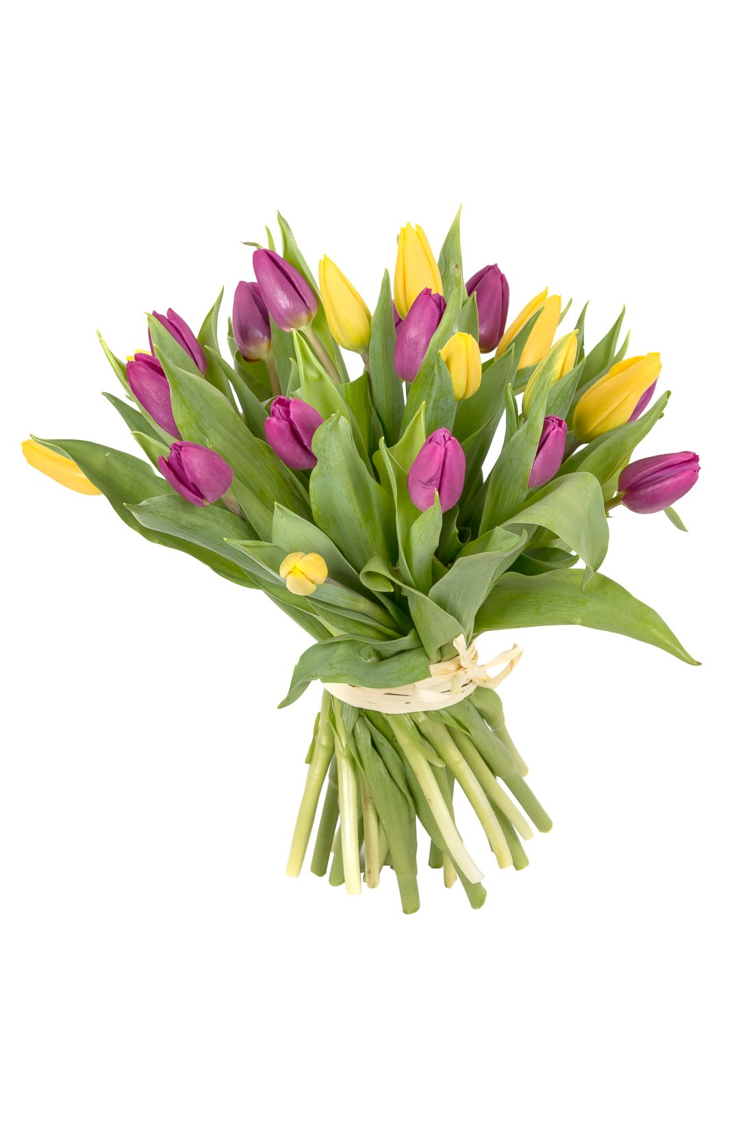 bouquet-of-25-colorful-tulips